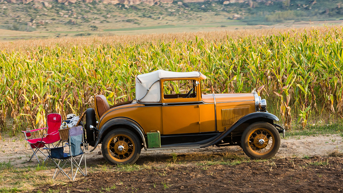 The Model A Club of South Africa were very active at Stars of Sandstone 2017 and were probably the most photographed visitors with their cars, here a Model A convertible rests for a picnic next to the Mealie field