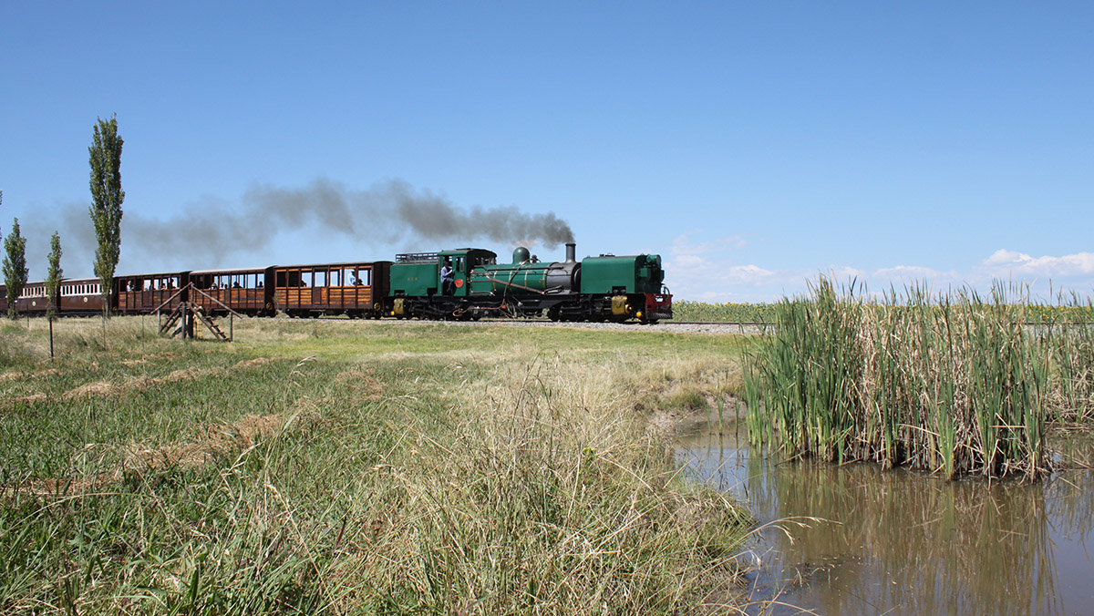 NGG16 no. 88 Heads for Vailima
